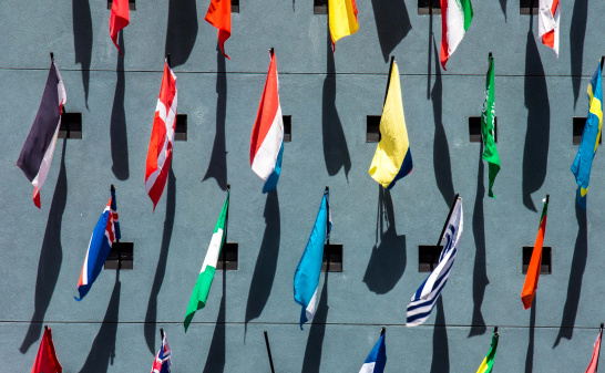 flags_from_above