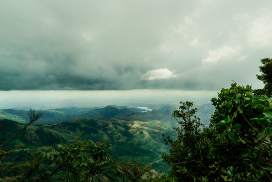 Panama, forest, landscape, mountain, nature, Escazu Agreement