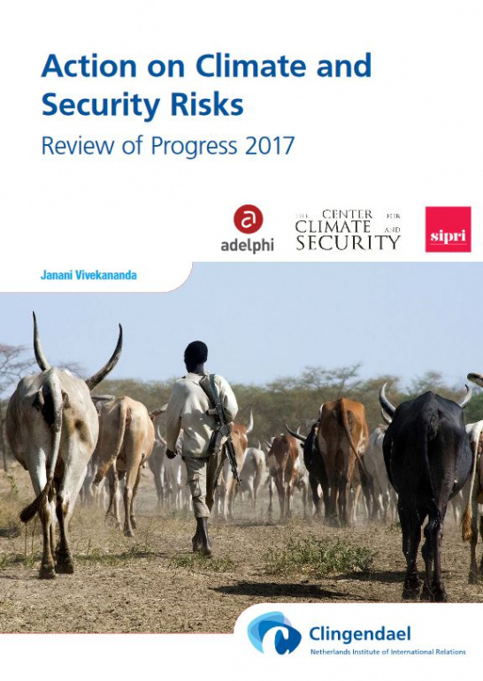 adelphi planetary security progress report - action-on-climate-and-security-risks.jpg