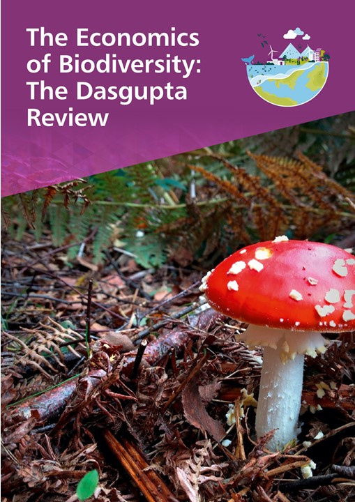 Dasgupta_Review_Cover