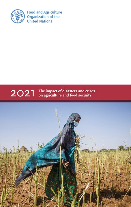 FAO impact disasters agriculture cover