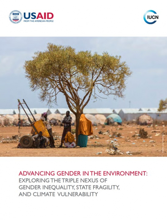 USAID_Gender-Triple-Nexus-Research_Cover