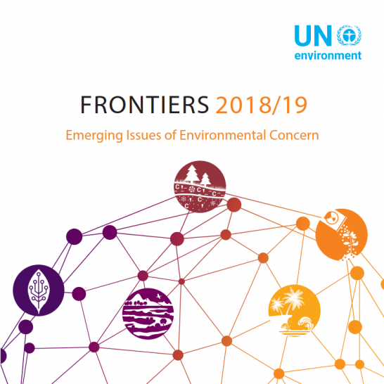Frontiers 2018/19: Emerging Issues of Environmental Concern