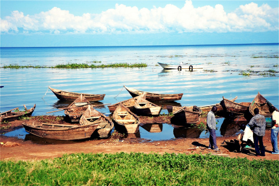 Boats on the shore of Lake Victoria, Uganda