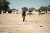 Lake Chad, climate, conflict
