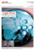 HSBC Global Research 2019 - Fragile Planet